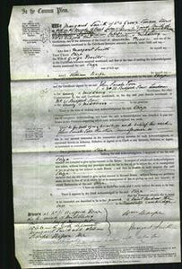 Court of Common Pleas - Eliza Proctor-Original Ancestry