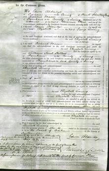 Court of Common Pleas - Elizabeth Liming-Original Ancestry