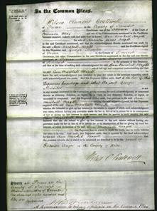 Court of Common Pleas - Ann Marshall Magill-Original Ancestry