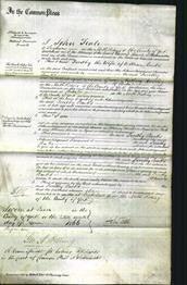 Court of Common Pleas - Dorothy Banks-Original Ancestry
