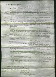 Court of Common Pleas - Mary Ann Sutton-Original Ancestry