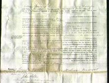 Court of Common Pleas - Mary Whitlow-Original Ancestry