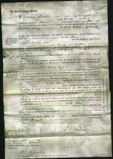 Court of Common Pleas - Mary Goldsack-Original Ancestry