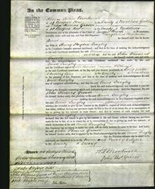 Court of Common Pleas - Anne Langley-Original Ancestry