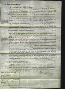 Court of Common Pleas - Mary Ann Maxted-Original Ancestry