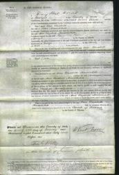 Court of Common Pleas - Ann Elizabeth Musselwhite-Original Ancestry