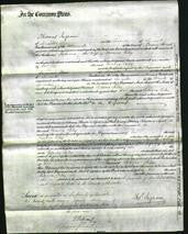 Court of Common Pleas - Rebeca Riley-Original Ancestry