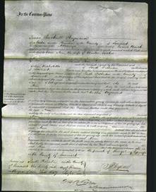 Court of Common Pleas - Ann Tucker-Original Ancestry