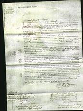 Court of Common Pleas - Phebe Taurant-Original Ancestry