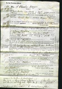 Court of Common Pleas - Sarah Jane Hopkins-Original Ancestry