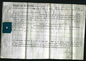 Deed by Married Women - Mary Ann Downey-Original Ancestry