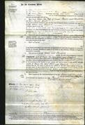 Court of Common Pleas - Ellen Bourn and Elizabeth Liddle-Original Ancestry