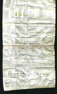 Court of common Pleas - Anne Flack-Original Ancestry