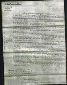 Court of Common Pleas - Ann Lindall-Original Ancestry