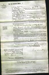 Court of Common Pleas - Isabella McMinn-Original Ancestry
