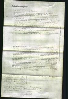 Court of Common Pleas - Anne Dixon-Original Ancestry