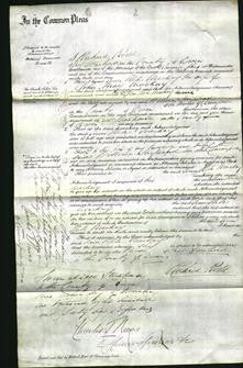 Court of Common Pleas - Ann Hele Mackay-Original Ancestry