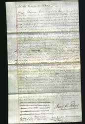 Court of Common Pleas - Jane Allen-Original Ancestry