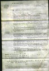 Court of Common Pleas - Frederica Jane Sheppard-Original Ancestry