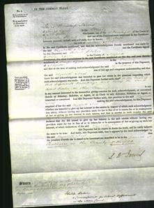 Court of Common Pleas - Elizabeth Neal-Original Ancestry