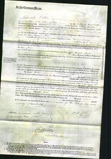 Court of Common Pleas - Ann Pope-Original Ancestry