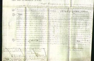 Court of Common Pleas - Jane Hoodleys, Isabella Younger and Mary Newby-Original Ancestry