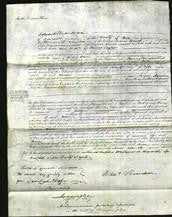Court of Common Pleas - Ann Taylor-Original Ancestry