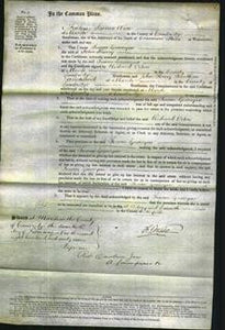 Court of Common Pleas - Susan Gascoyne Hurry-Original Ancestry