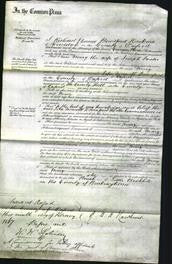 Court of Common Pleas - Mary Foster-Original Ancestry