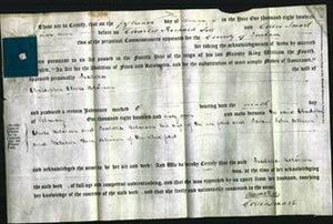 Deed by Married Women - Isabella Robinson-Original Ancestry