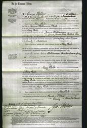 Court of Common Pleas - Mary Peile-Original Ancestry