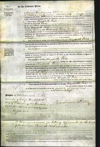 Court of Common Pleas - Elizabeth Price-Original Ancestry