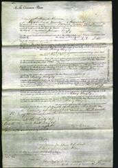 Court of Common Pleas - Mary Bayly-Original Ancestry
