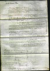 Court of Common Pleas - Mary Bayly #2-Original Ancestry