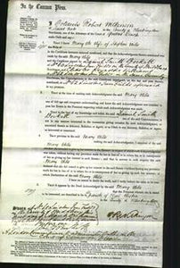 Court of Common Pleas - Mary Wiles-Original Ancestry
