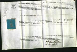 Court of Common Pleas - Mary Wormald-Original Ancestry