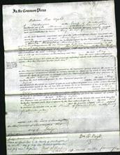 Court of Common Pleas - Mary Enfield-Original Ancestry