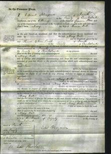 Court of Common Pleas - Mary Hall-Original Ancestry