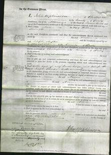 Court of Common Pleas - Ann Shemwell-Original Ancestry