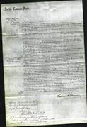Court of Common Pleas - Mary Reavill-Original Ancestry