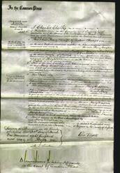 Court of Common Pleas - Mary Knapton-Original Ancestry