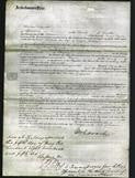 Court of Common Pleas - Elizabeth Wilson-Original Ancestry