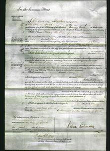 Court of Common Pleas - Mary Creaser-Original Ancestry