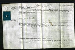 Deed by Married Women - Ann Furrell-Original Ancestry