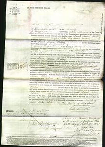 Court of Common Pleas - Sarah Moore Halsey-Original Ancestry