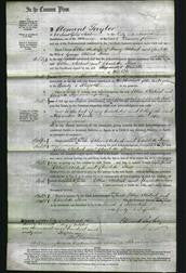 Court of Common Pleas - Ellen Aldred and Charlotte Rose-Original Ancestry