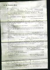 Court of Common Pleas - Mary Anne Dearsly-Original Ancestry