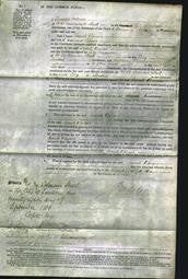 Court of Common Pleas - Sarah Bevon-Original Ancestry