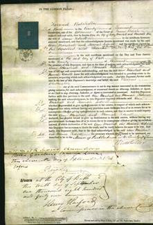 Court of Common Pleas - Ann Marshall and Hannah Kidwell-Original Ancestry