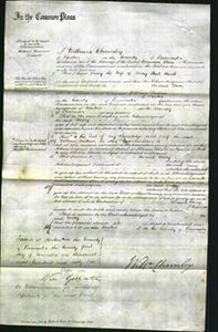 Court of Common Pleas - Mary Hunt-Original Ancestry